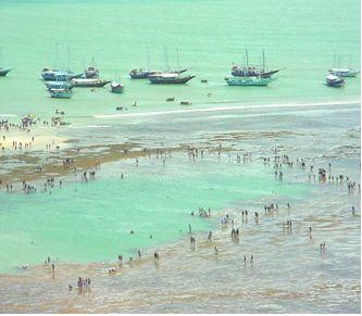 Vista de cima Recife de fora (imagem da internet)